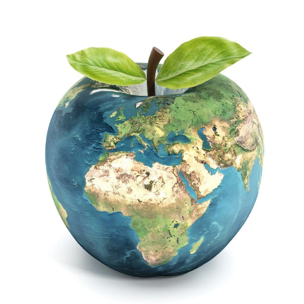 Adamovo alma prosztatitis
